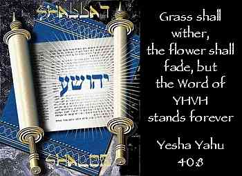 The Word of YHVH